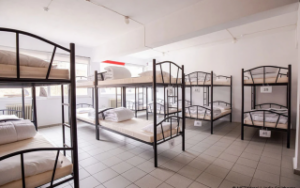 Dormitory for homeless teens opens in the capital